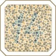 проверка зрения на цветовосприятие по тесту на дальтонизм. Картинка 11