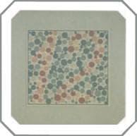 проверка зрения на цветовосприятие по тесту на дальтонизм. Картинка 12