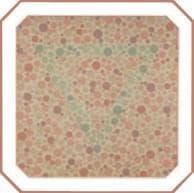проверка зрения на цветовосприятие по тесту на дальтонизм. Картинка 28