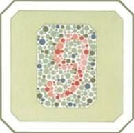 проверка зрения на цветовосприятие по тесту на дальтонизм. Картинка 3
