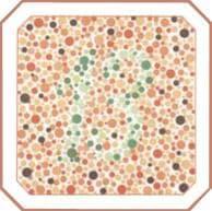 проверка зрения на цветовосприятие по тесту на дальтонизм. Картинка 5