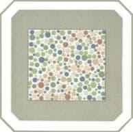 проверка зрения на цветовосприятие по тесту на дальтонизм. Картинка 6