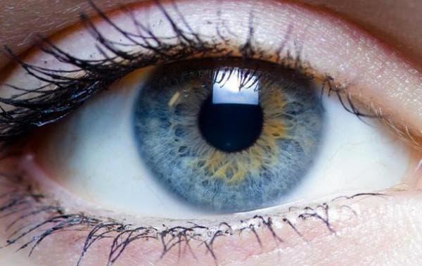 контактные линзы какие лучше выбрать, как выбрать линзы контактные, как подобрать контактные линзы, контактные линзы какие лучше выбрать отзывы, как выбрать контактные линзы для глаз, как подобрать контактные линзы для глаз,