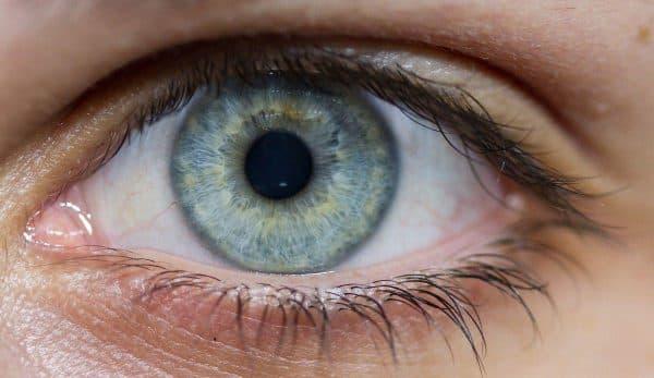 зрительная информация от сетчатки правого глаза поступает, ангиопатия сетчатки глаза, отслоение сетчатки глаза что это такое, сетчатка глаза, дистрофия сетчатки глаза что это такое, дистрофия сетчатки глаза лечение,