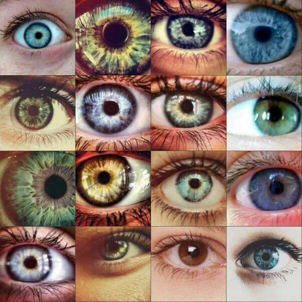 разновидности цветных линз имитирующих естественный вид зрачка