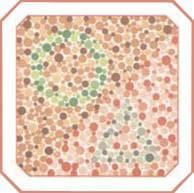 проверка зрения на цветовосприятие по тесту на дальтонизм. Картинка 13