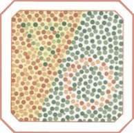 проверка зрения на цветовосприятие по тесту на дальтонизм. Картинка 18