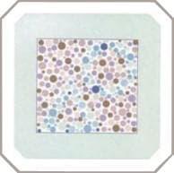 проверка зрения на цветовосприятие по тесту на дальтонизм. Картинка 21