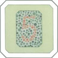 проверка зрения на цветовосприятие по тесту на дальтонизм. Картинка 23