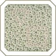 проверка зрения на цветовосприятие по тесту на дальтонизм. Картинка 27