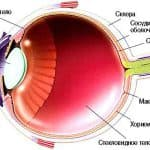 Дистрофия сетчатки глаза: что это такое?