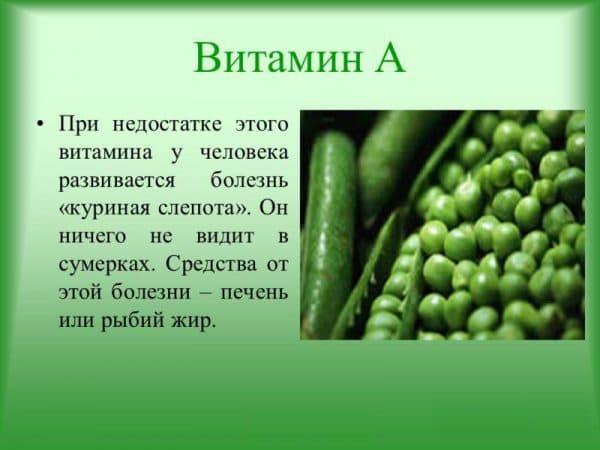 prichiny-vozniknoveniya-kurinoj-slepoty