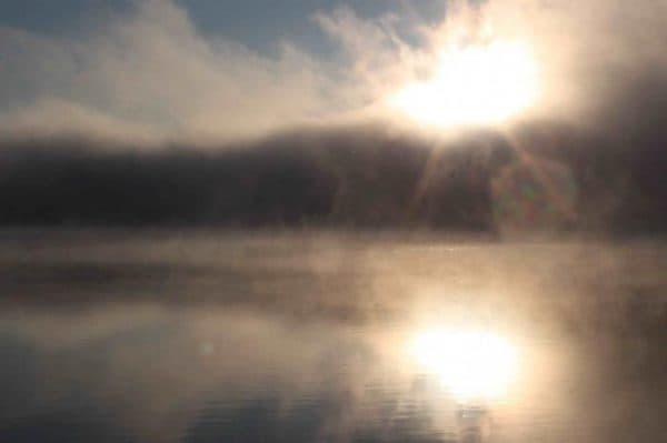 Туман перед глазами причины
